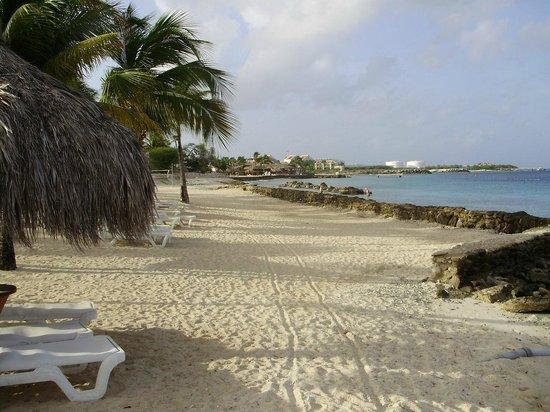 Plaza Resort Bonaire : beach area