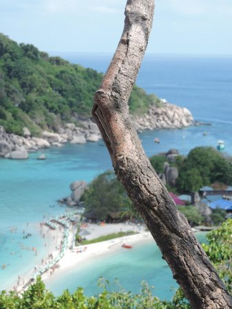 Koh Nang Yuan: dal view point
