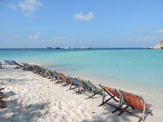 Koh Nang Yuan: spiaggia e sdrai