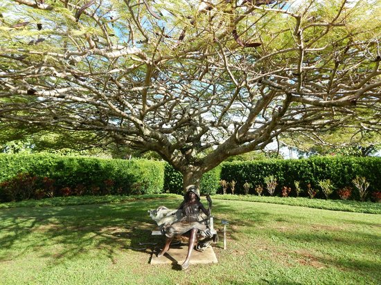 Na Aina Kai Botanical Gardens: Sculpture and Botanical Artistry