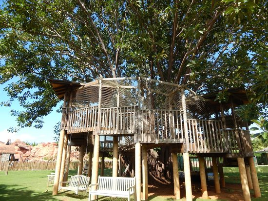 Na Aina Kai Botanical Gardens: A Real Treehouse in the Children's Garden