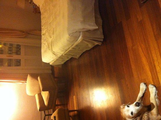Grand Hotel Minerva : Camera superior con il nostro cane