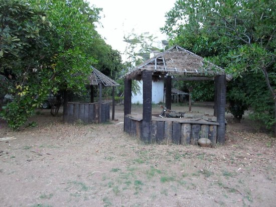 Kaytumadi Dynasty Hotel : summer bar
