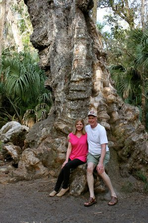 Highlands Hammock State Park: In front of The Big Oak Tree