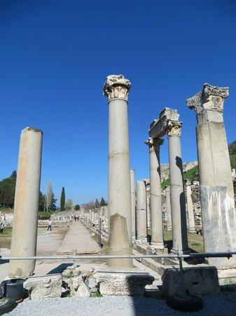Troy Tours : Ephesus