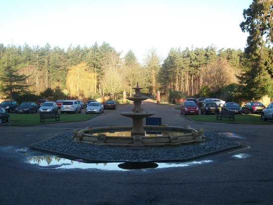 Dunston Hall: View back down the drive