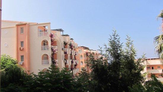 Club Paradiso Resort: View