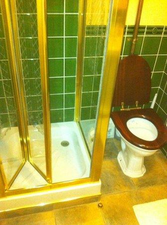 Creston Villa Guest House: bathroom