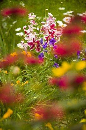 Canoe Bay: Amazing gardens