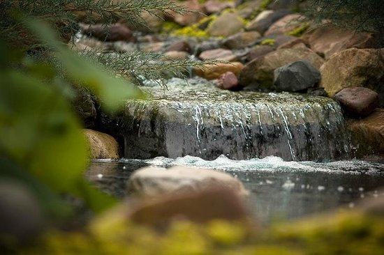 Canoe Bay: A waterfall to welcome you