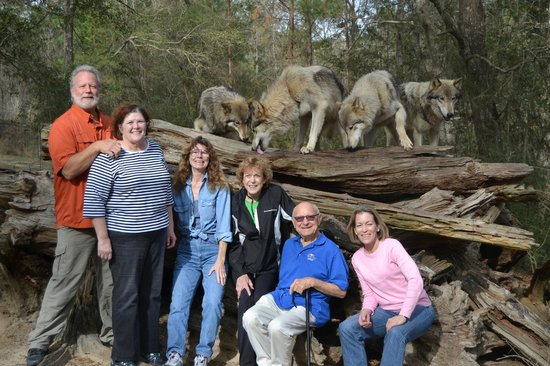 """Seacrest Wolf Preserve: Our group with """"the juveniles"""""""