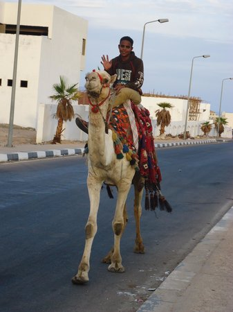 The Grand Hotel Sharm El Sheikh: Normal street traffic