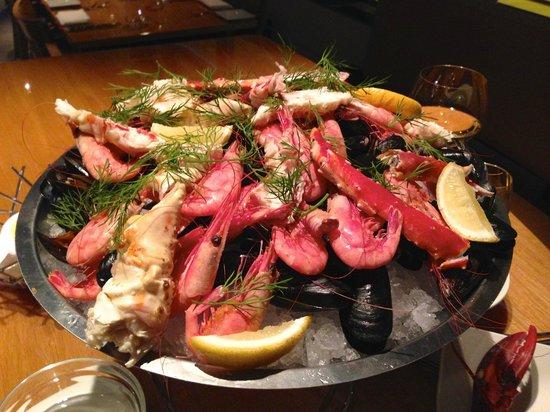 Fiskekompaniet: Pregnant shrimps everywhere!