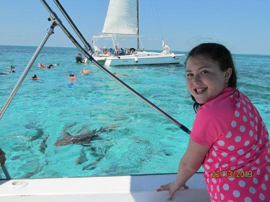 Réserve marine de Hol Chan : Snorkeling with sharks!