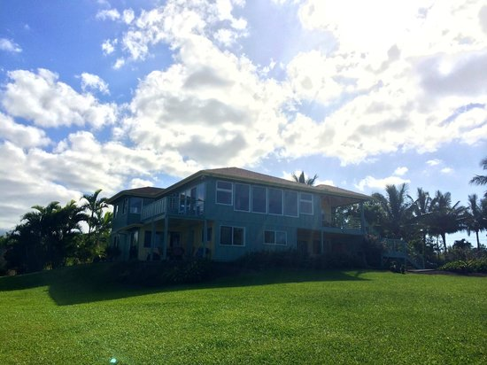 Maui Ocean Breezes: The apartment (left patio) and studio (right patio) are located on the ground level