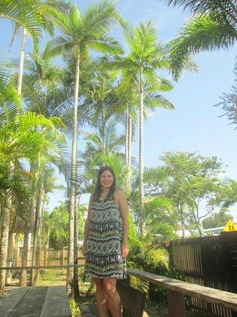 Cairns Beach House: Tropics