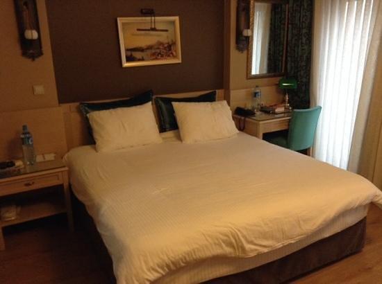 Hotel Seraglio: chambre 101
