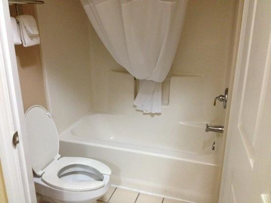 Quality Inn Palm Bay: bath area