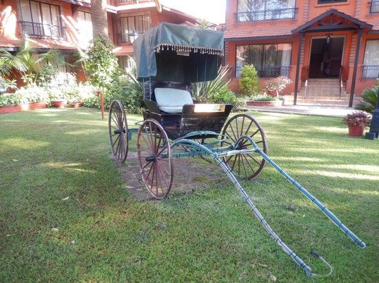Fairmont The Norfolk: Horse Drawn Buggy