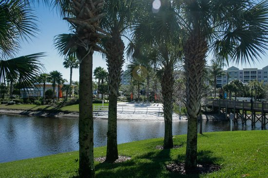 Bluegreen Fountains Resort: Great view of the little beach area