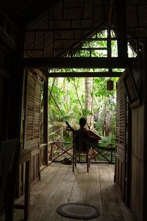 Freedomland Phu Quoc Resort: serenading the leaves.