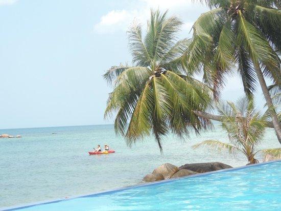 Sunset Cove Resort : infinity-mare