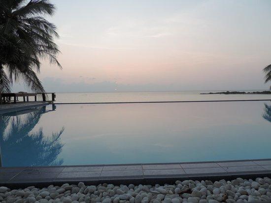 Sunset Cove Resort : infinity