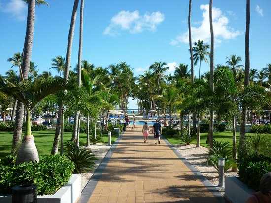 Hotel Riu Palace Macao: loooking towards pool and through to beach from hotel