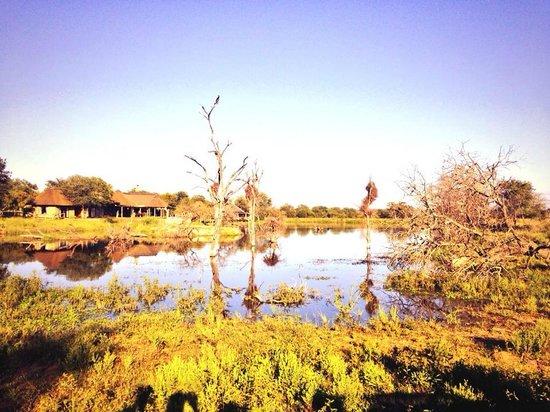 Makalali Private Game Lodge : Edge of the propery has savannah and lake