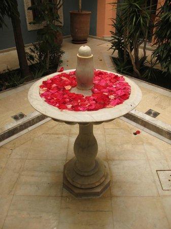 Riad Siwan: Trädgården