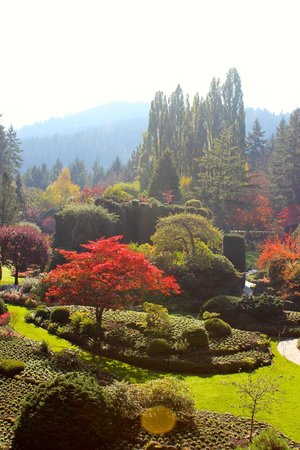 Butchart Gardens : Gorgeous Landscape