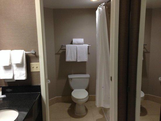 Hyatt Regency Dulles: Bathroom