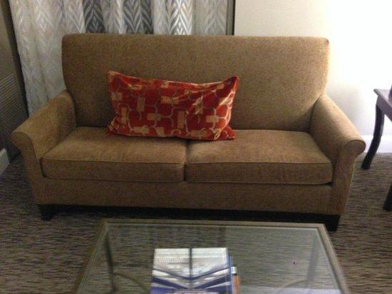 Hyatt Regency Dulles: Couch