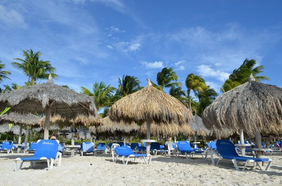 Hilton Aruba Caribbean Resort & Casino: Playa IV