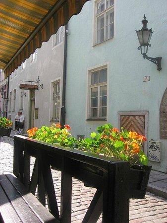 Tallinn Old Town: На улочках старого Таллинна.