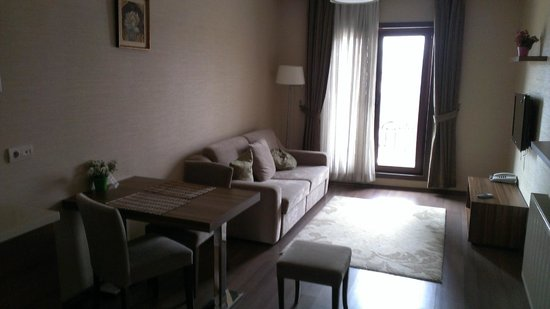 Belle Maison Residence : living room