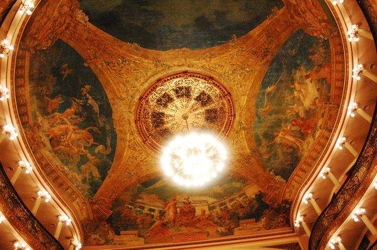 Teatro Amazonas Museum : Obra Teto Central
