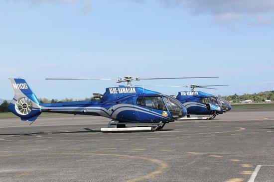 Blue Hawaiian Helicopters - Oahu : The landing area