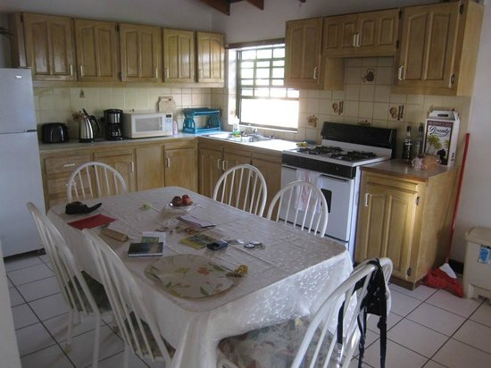 Tropical Breeze Guest House: Kitchen area - Tropical Breeze Apt