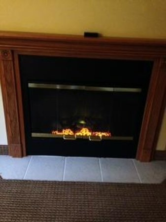 Country Inn & Suites By Carlson, Portage: Electric Fireplace