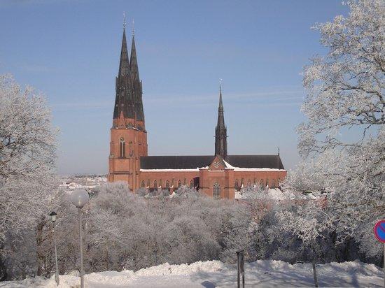 Grona Stugan : Catedral