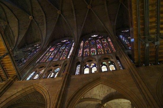 Catedral de León - Santa María de Regla: Vidrieras