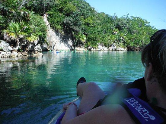 Parc Xel-Ha : on sort des mangroves
