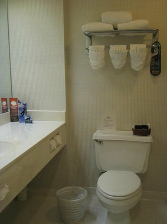 Lodge at Jackson Village: Bathroom
