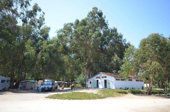 Camping Les Eucalyptus: Bagni