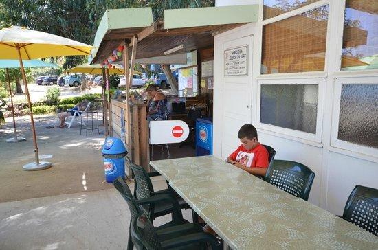 Camping Les Eucalyptus: Bar / reception