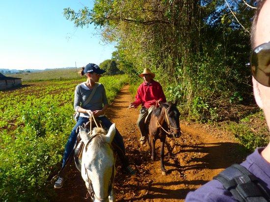 Casa Omaida Rodriguez: escursione a cavallo