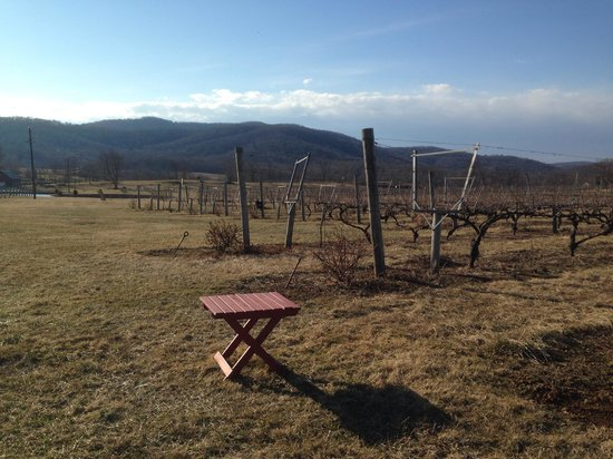 Philip Carter Winery: View 1