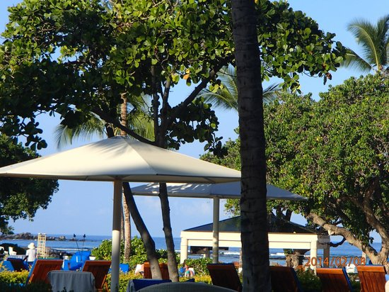 Mauna Lani Bay Hotel & Bungalows: View from the Bay Terrace