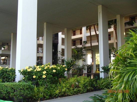 Mauna Lani Bay Hotel & Bungalows: More lobby